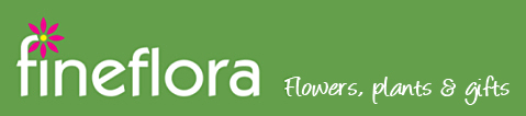 Fineflora - Flowers, Plants and Gifts