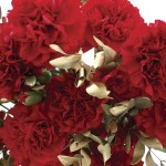 Red and Gold Carnations 12 Stems + FREE Diary, £12.99