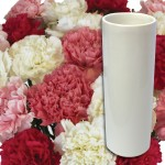 Pink and White Carnations 12 stems with Vase, £13.98
