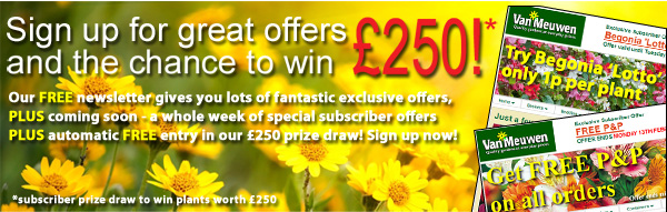 Sign up to our newsletter to be in with a chance of winning £250 worth of plants