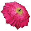 Pink Gerbera Umbrella