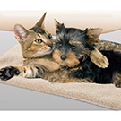 Self-Heating Pet Beds