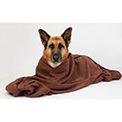 Doggy Bags Microfibre Zip-Up Towel