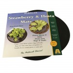 Strawberry and Hosta Mats (pack of 10), only £14.98