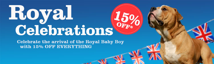 Royal_Baby_WebBanner_AW_Category
