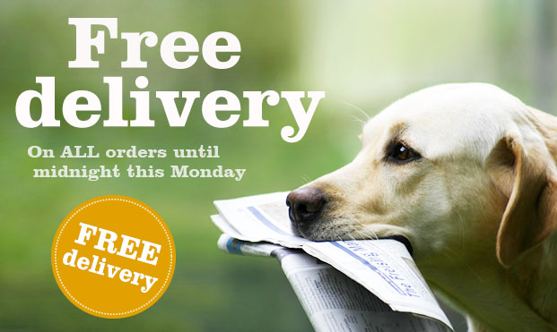 MP_Emailer_Free_delivery-monday