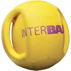 Interball dog ball toy - HALF PRICE!