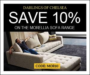 Morellia1