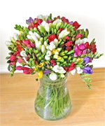 Posy Freesia Bouquet