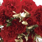 10 Red & Gold Carnations, only £14.99