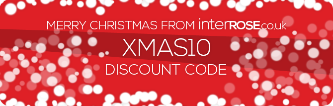 All you need this Christmas is... InterRose.co.uk