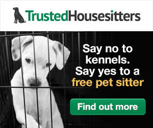 Say No to Kennels