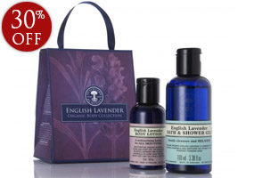 english-lavender