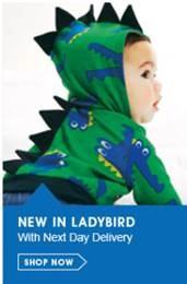 new in ladybird