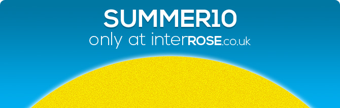 10% Off in The Summer Sun