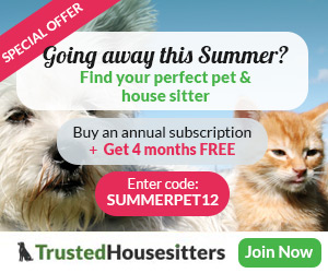 HO-summersale-aff-300x250
