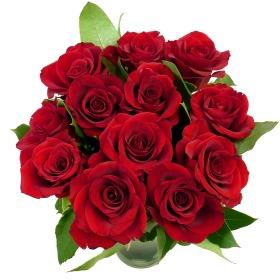 Valentine_12_Red_Roses_v1__________wi280he280moletterboxbgwhite