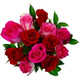 Valentine_Roses_v1__________wi280he280moletterboxbgwhite