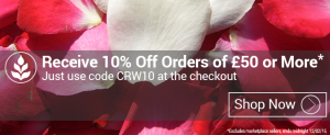 awin_10_percent_blog_banner