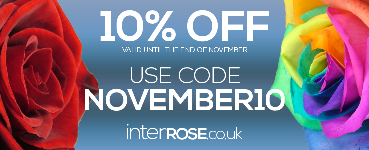 10% at interROSE.co.uk throughout November