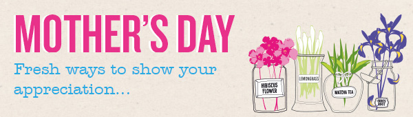 Adnams mothers day banner