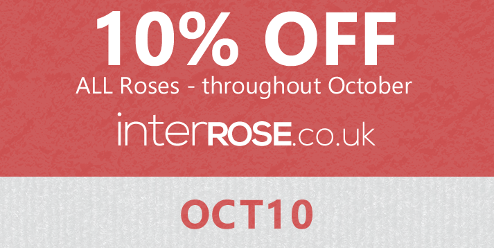 interROSE.co.uk - 10% OFF in October