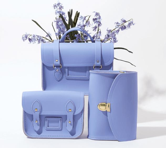 Spring Arrivals: Bluebell